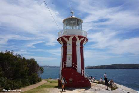 watsons bay-gap park (5)