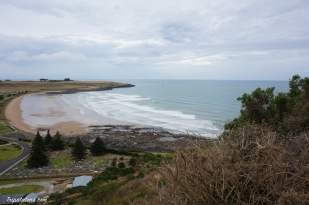 The Nut State Reserve (1)