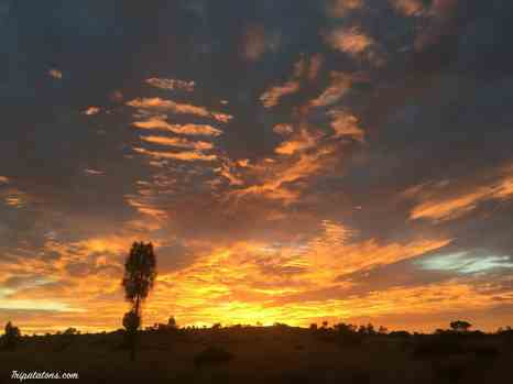 sunrise-camp-uluru-1