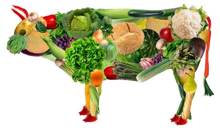 Corsa e alimentazione vegana