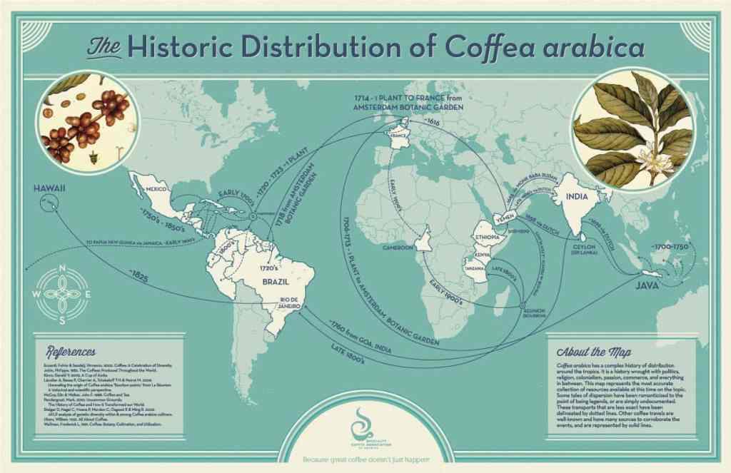 Global Spread of Coffee
