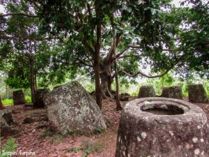 Plain_of_Jars Laos