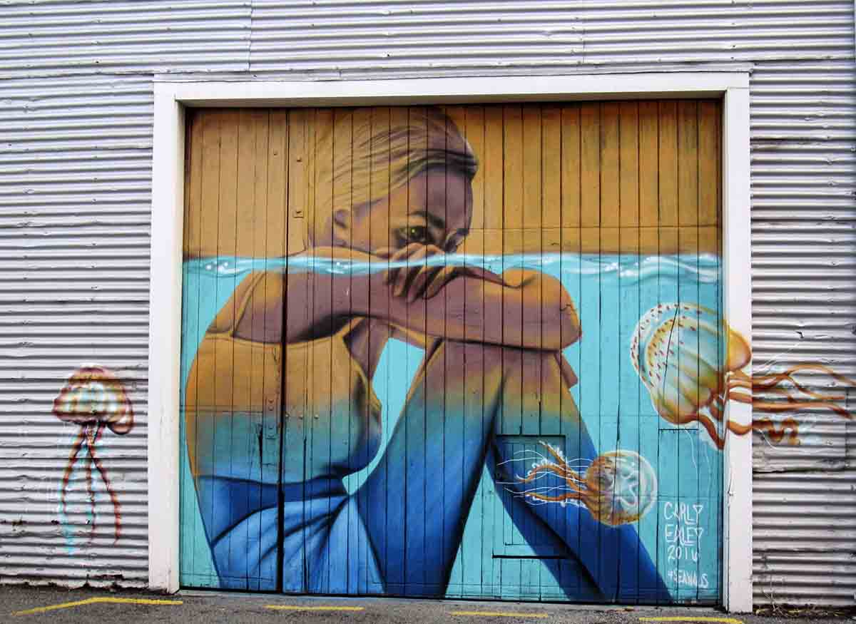 Sea Walls – Napier's Spectacular Street Art!