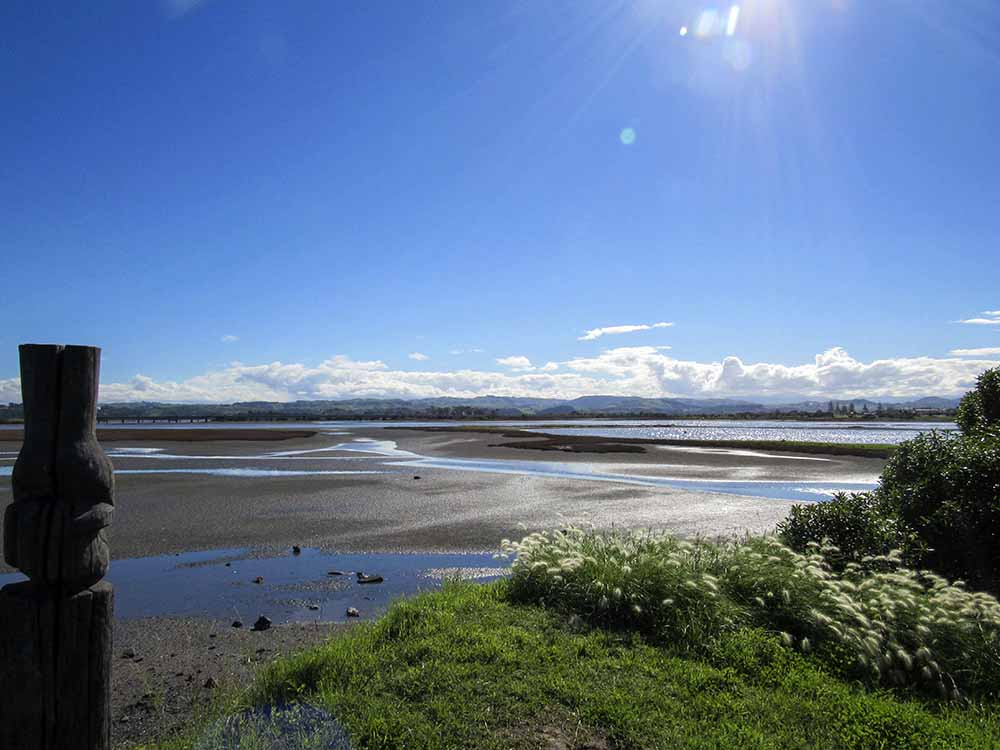 10 Things to do in the Picturesque Seaside Town of Ahuriri