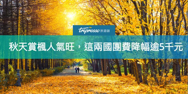 【三立新聞】秋天賞楓 人氣旺,這兩國團費降幅逾5千元!