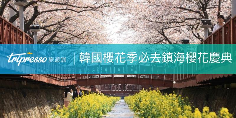 韓國櫻花季|韓國春天必去必看的鎮海櫻花慶典、鐵路櫻花道、韓國軍港節