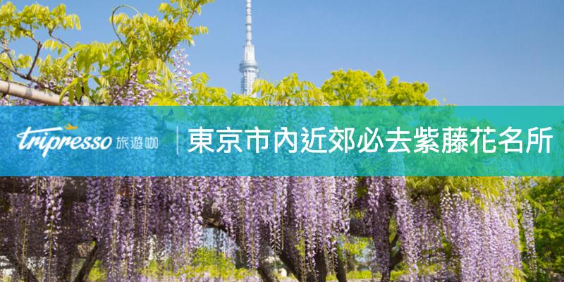 東京紫藤花特輯|東京市內、東京近郊必去紫藤花名所精選