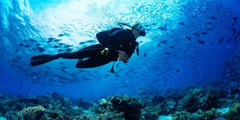 潛水保險這樣保,中暑、失溫、潛水夫病、傷害醫療、緊急救援⋯⋯保障都有包!