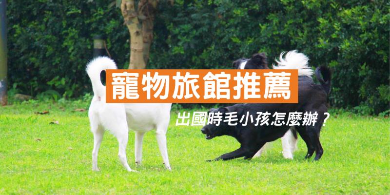 【寵物旅館推薦】出國時寵物怎麼辦?寵物住宿推薦、寵物寄宿費用總整理,主人必看挑選注意事項!