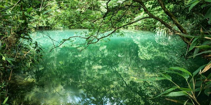 淡蘭古道 北路、中路、南路|3區域健行路線大解析x生態美景一次看!