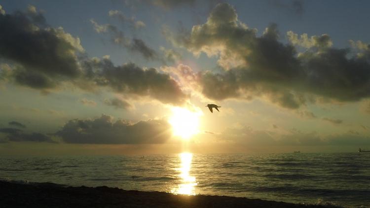 Miami Beach Sun Rise