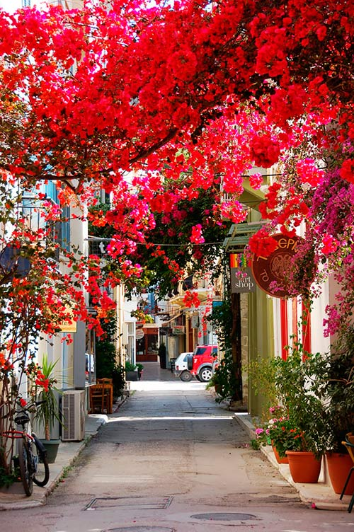 Nafplio Street, Peloponnese, Greece