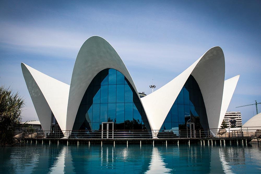 L'Oceanogràfic Valencia Spain