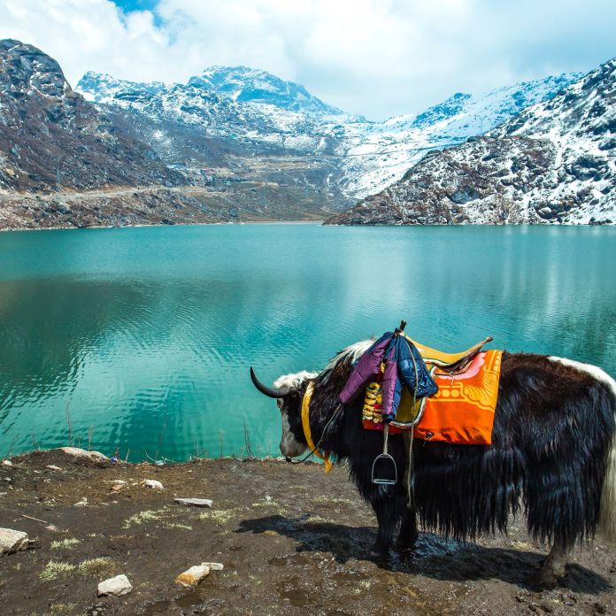 Top Things To Do In Sikkim India