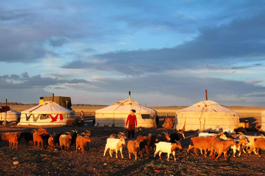 A view of the Countryside life during Bolor's 1,400 km journey back to her home in Khovd, Mongolia