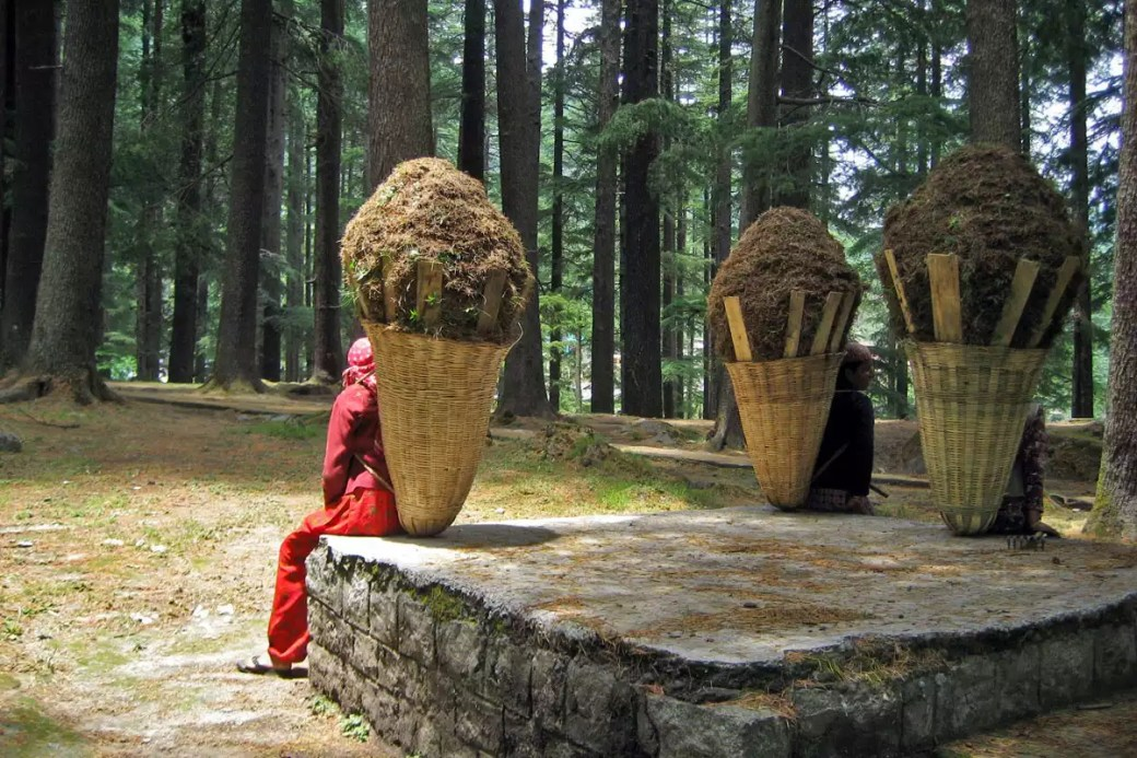 Workers taking a break in Manali Nature Park
