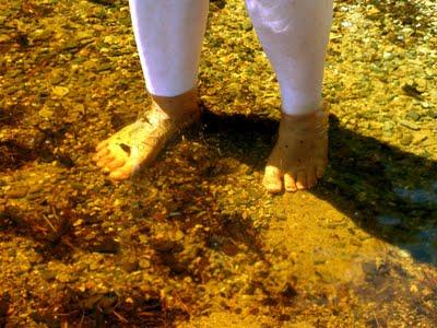 Kejimkujik Lake Tannin Brown Water shows the whiter shade of pale of DD's legs!