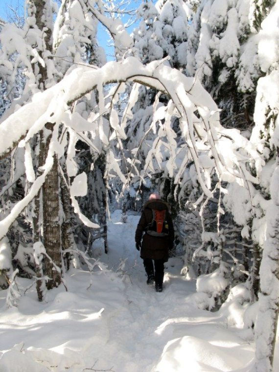 Dobson Trail, New Brunswick, Winter