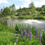 Kingsbrae Gardens - Pond and Mill
