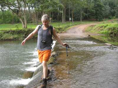 DAMI crosses the Wailua River on Kauai, wearing the new brown hiking boots and safety orange fashion so no wild pig hunters mistake him for a wild pig!