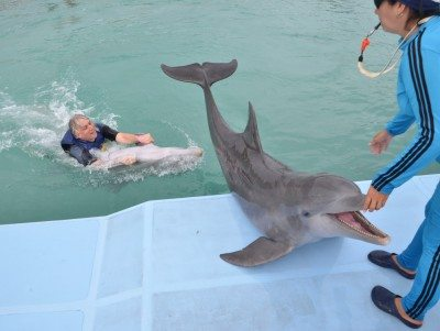 Getting towed around the dolphin pen was fast and furious and a bit fishy!