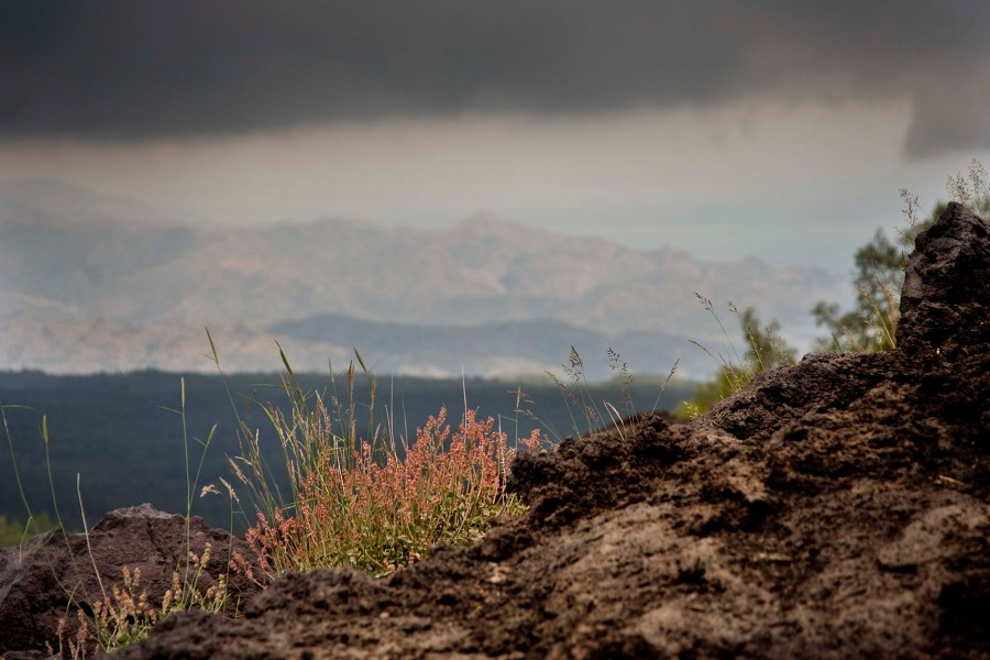 Etnan villi luonto © Giuseppe Fraticelli Flickr CC