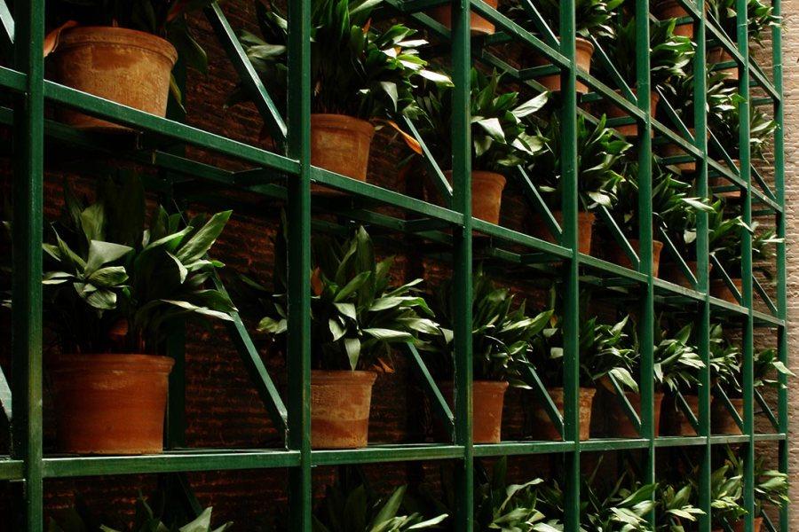 Vertikaali puutarha ©Casa Camper