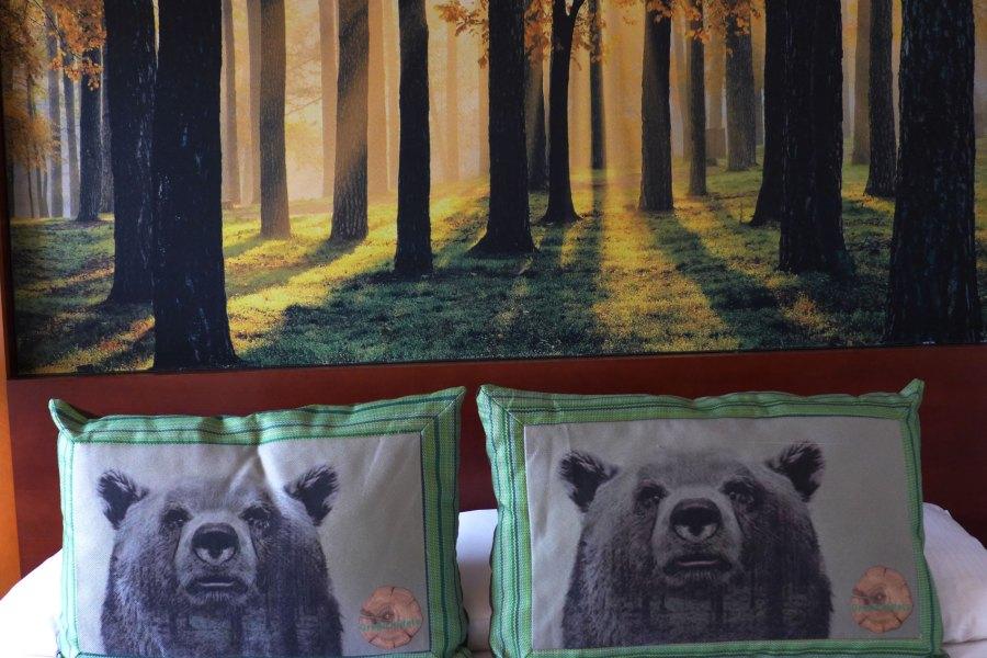 """Kauniita unia """"metsän"""" siimeksessä. © Anneli Airaksinen / Tripsteri"""
