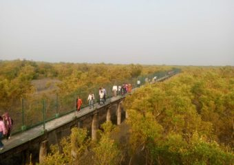 Sundarban watchtower