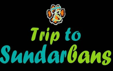trip to sundarbans