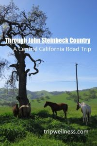 through steinbeck country pin