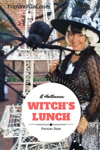 Elaine J Masters Halloween Party Witches Pin