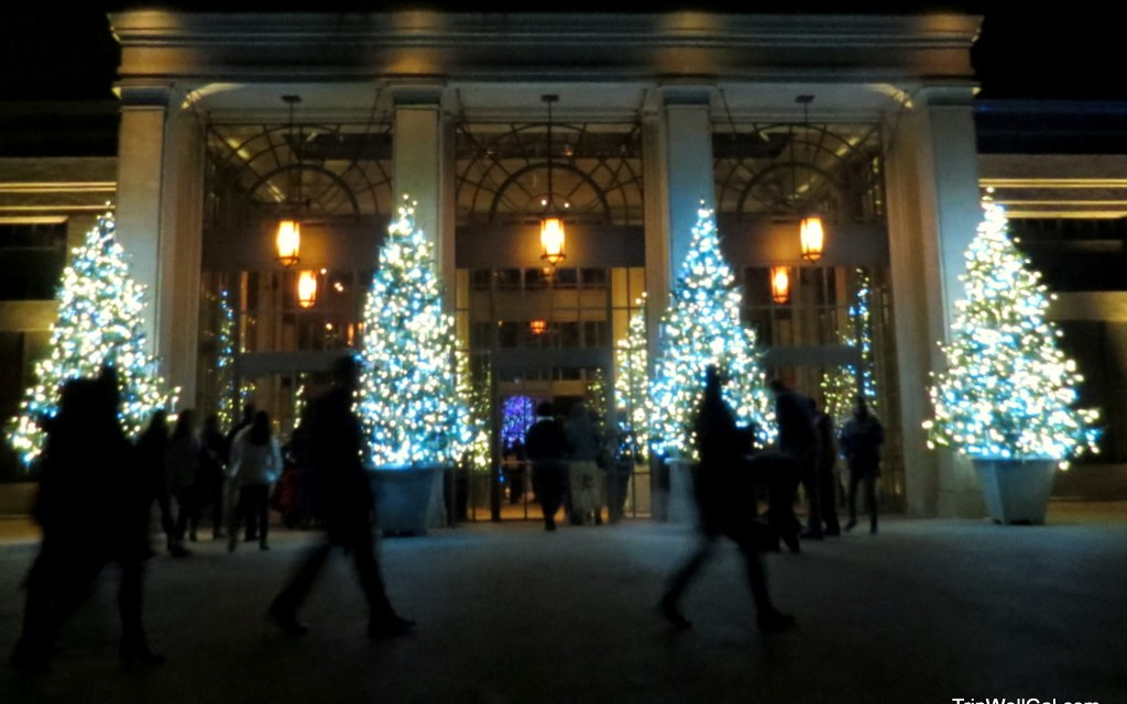 Longwood Gardens – Winter lights and bright nights