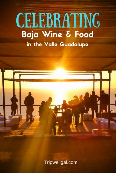 celebrating Baja wine and food pin