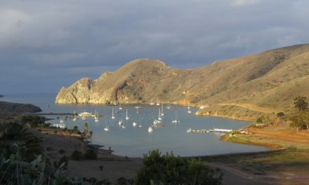 Why winter is a great time to visit Catalina Island
