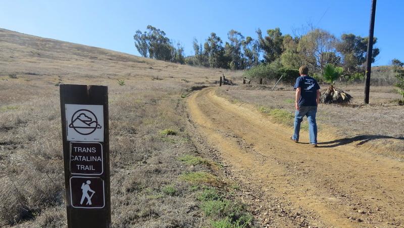 Trans Catalina trail marker