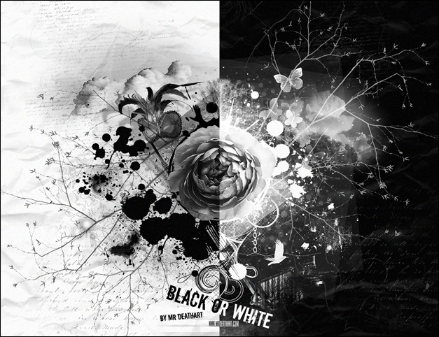 Black_or_White