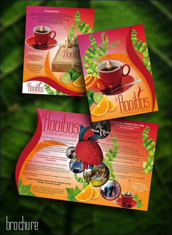 brochure[3]
