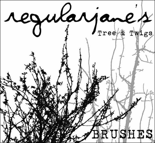 brush-pack-and-twigs-