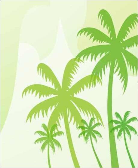 coconut-tree-brush