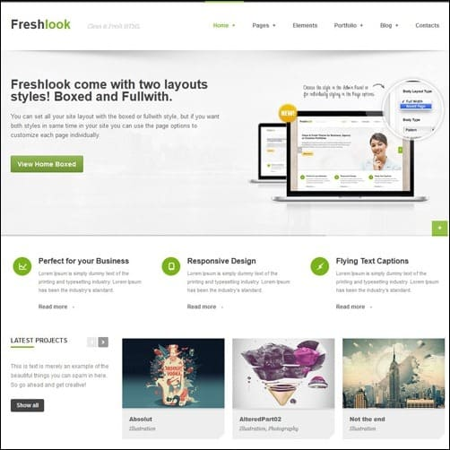 Freshlook business website template