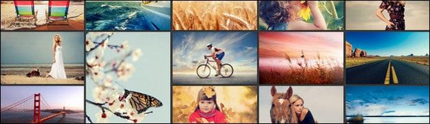 50+ Awesome WordPress Masonry Theme Collection