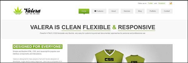 40+ Great Responsive HTML Website Templates