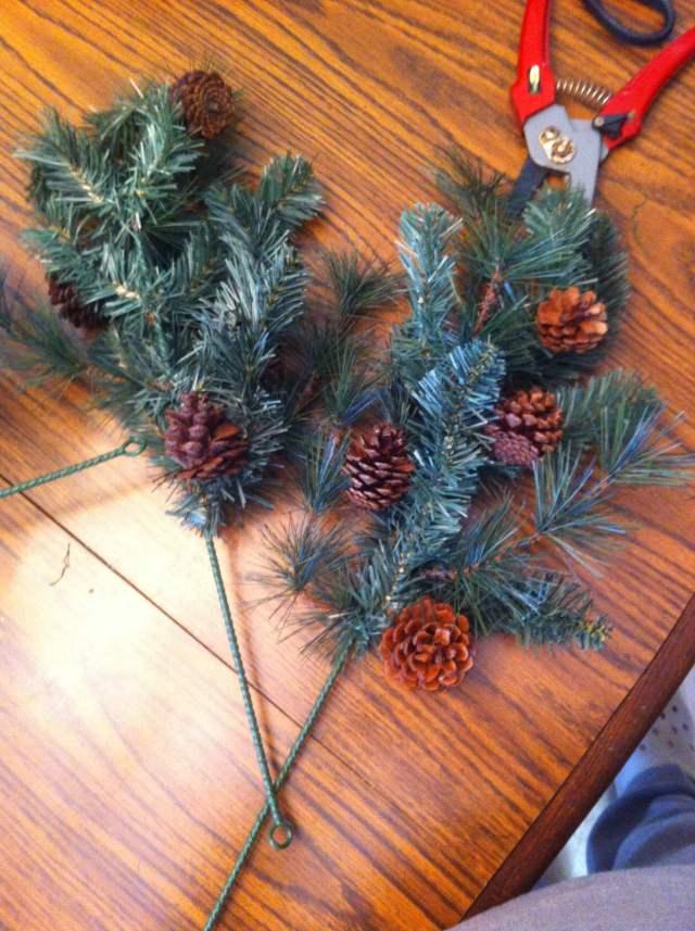 2 evergreen sprigs
