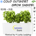 Cold Outside?  Grow Inside #Giveaway Ends Nov. 5 ENDED