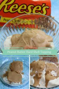 Peanut Butter Hard Shell Topping pin
