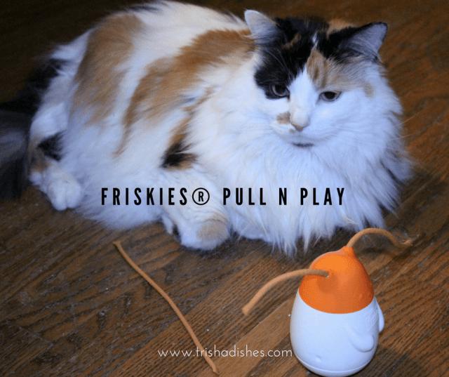 friskies-pull-n-play