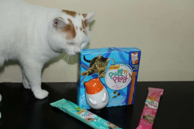 My cats just love the Friskies Pull N Play wobblert.