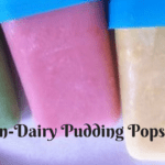 Non-dairy Pudding Pops