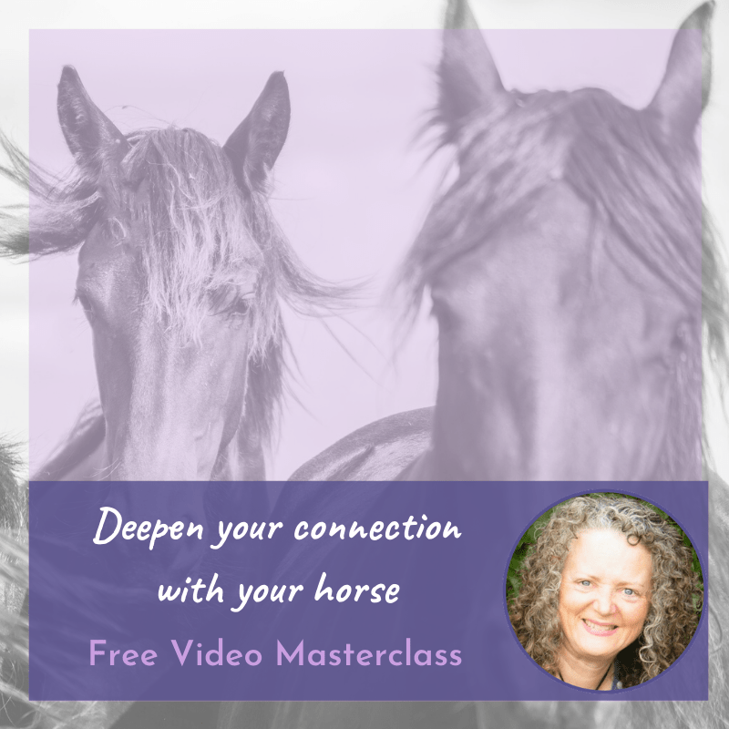 deepen your connection with your horse